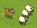 Кабан и овцы