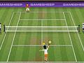 Чемпионат по теннису