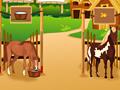 Забота о лошадях