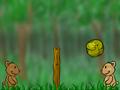 Медвежий волейбол