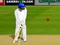 Ускоренный крикет
