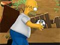 Обручи Симпсонов