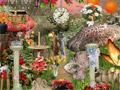 Ежегодный поиск цветов