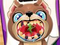 Щенок у стоматолога