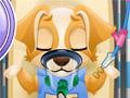Операция у щенка
