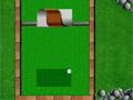 Сессия мини-гольфа