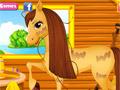 Уход за лошадью Бель