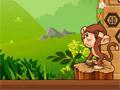 Фруктовый беспорядок обезьяны