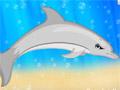 Создатель бутылконосого дельфина