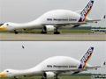 Отличия аэробуса птицы самолета