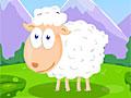 Кормить овец