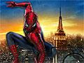 Фотоохота на Человека-паука