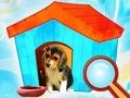 Найди объекты 3 в 1: Собачья будка