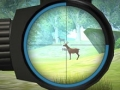 Тренировка охотника