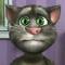 Говорящий кот
